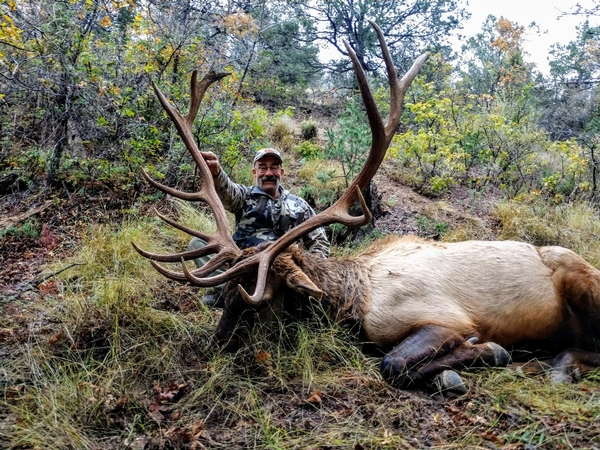 Elk Season Update