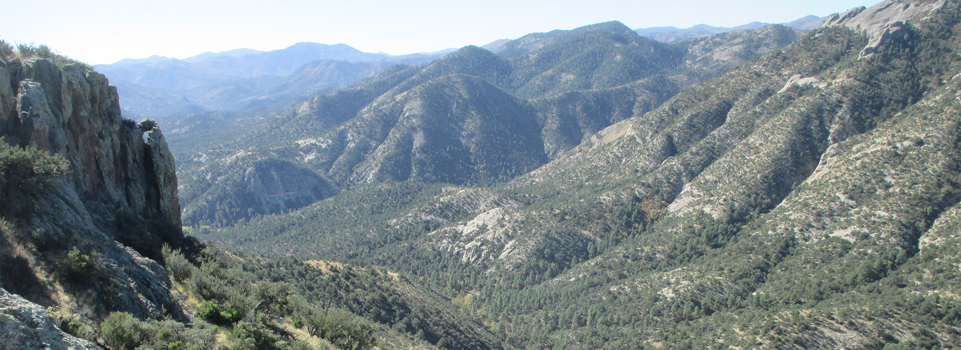 New Mexico Coues Deer Hunting Ranch & Outfitters