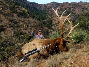 NM Elk Hunts