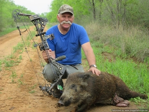 Texas Javelina Hunts